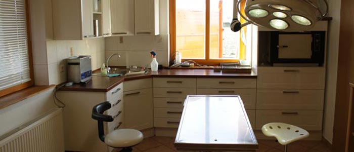 kleintierpraxis thomas went pfotenland bad harzburg. Black Bedroom Furniture Sets. Home Design Ideas